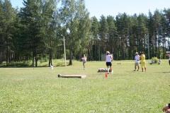 2010-07-17_Saarde_vägilane_01