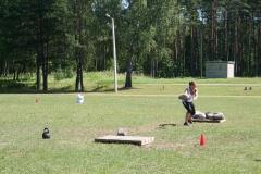 2010-07-17_Saarde_vägilane_05