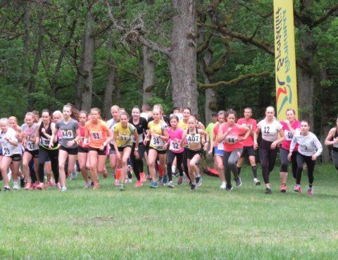 487f815b192 Jooksmine Archives - Sport Saarde vallas